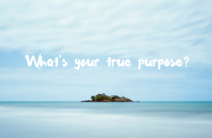 What's your true purpose